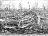 Rochester Tornado Picture 1